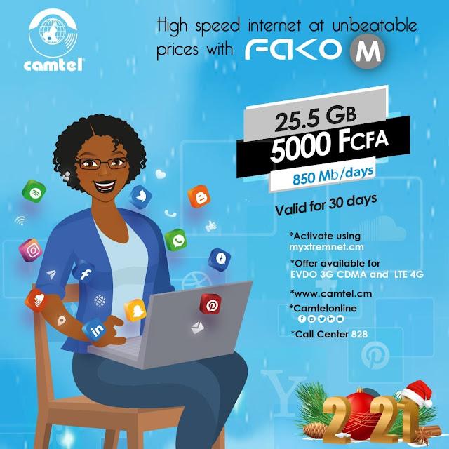 Camtel Internet Codes (Data Bundles)
