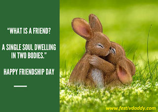 Friendship-Day-Quotes-in-English-Best-Friends-Forever-Whatsapp-Status