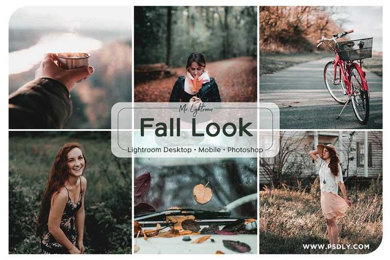 Fall Look Lightroom Presets 2689825