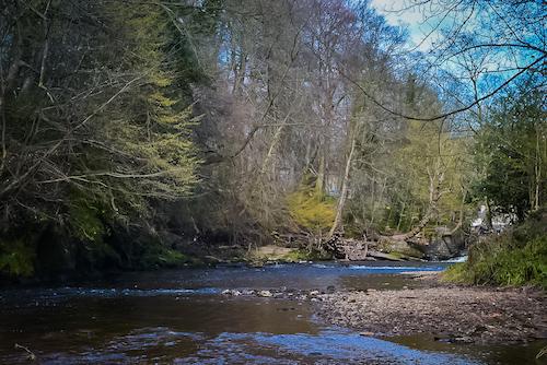 Things to do in Knaresborough - River Nidd