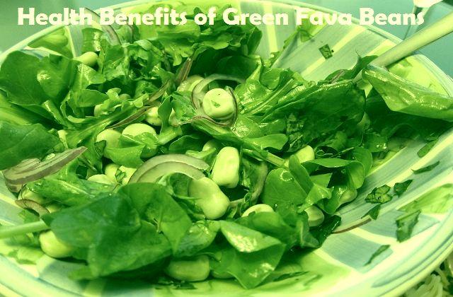 Green Fava Beans