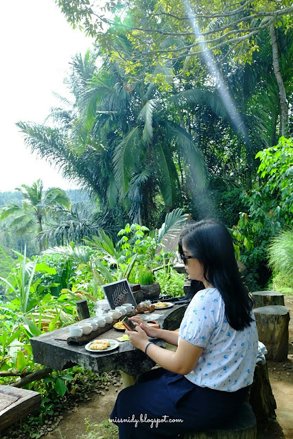 bali pulina review blog