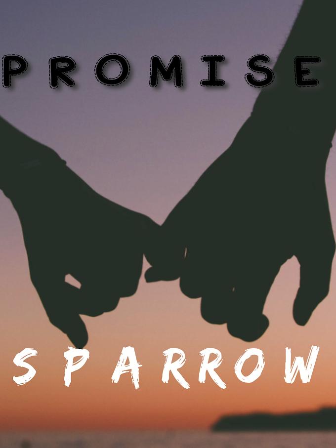 [Music] Sparrow - Promise