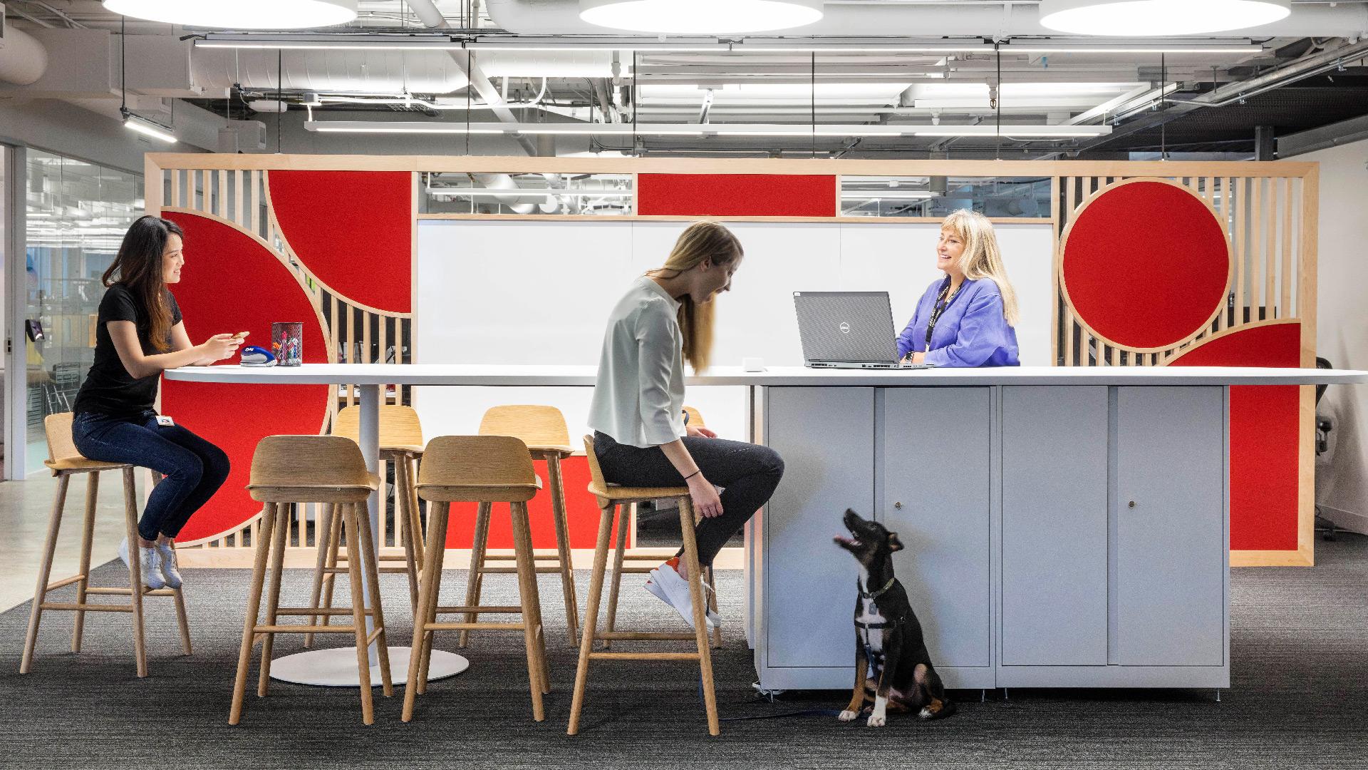 الموظف الناجح يتألق في بيئة العمل السعيدة