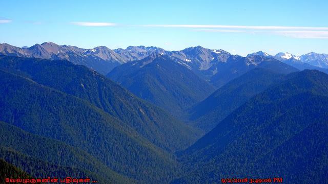 Olympic Peninsula Washington