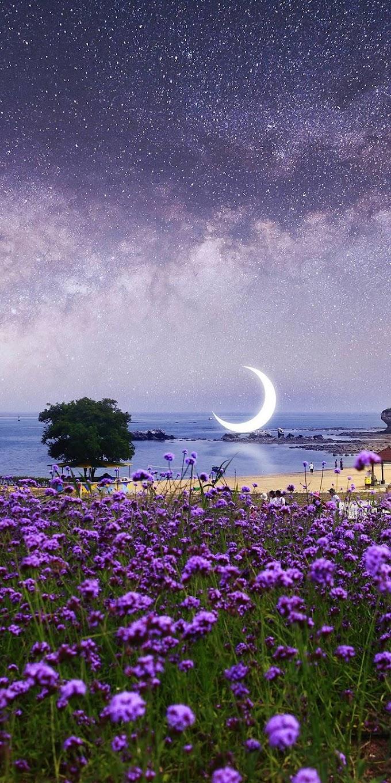 Imagem para Celular Lua Caída na Praia
