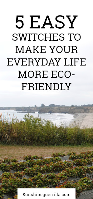 five easy switches to make your life more eco-friendly
