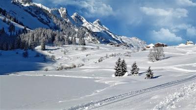 Nieve, Francisco Acuyo