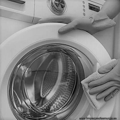 como quitar el mal olor de la lavadora