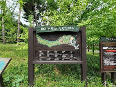 To Daegu Arboretum and Beyond