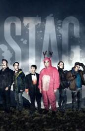 Stag Temporada 1 audio espa�ol