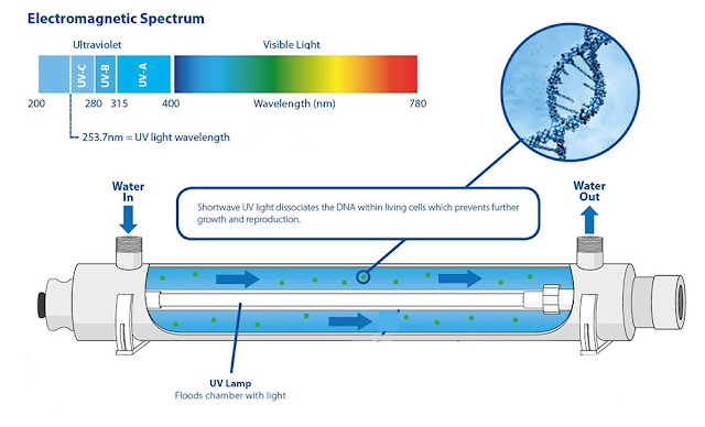 Electromagnetic Spectrum UV Lamp