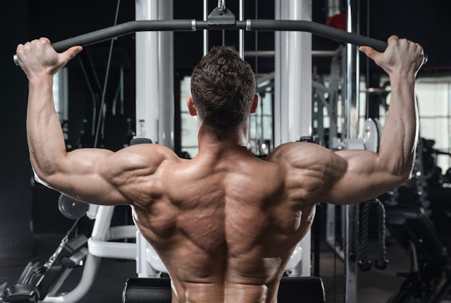 By Richard Presley, Best Workout For Back