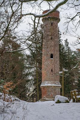 Blättersbergweg Rhodt  Winterwandern Südliche Weinstraße  Rietburg - Villa Ludwigshöhe - Edenkoben 17