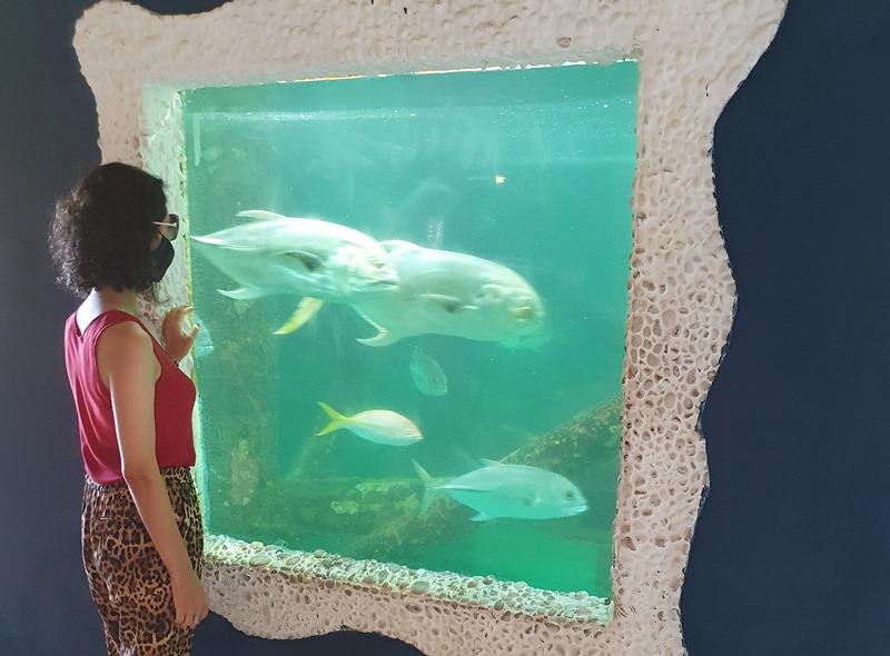 Oceanário de Aracaju