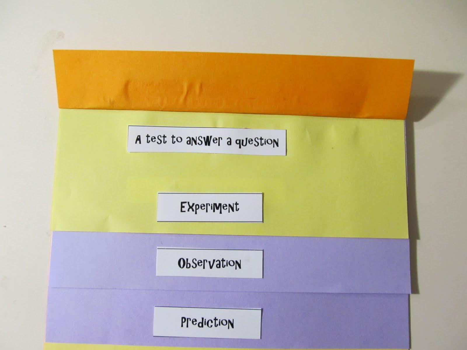 Bookish Ways In Math And Science Unit Resource Portfolio Scientific Investigation