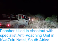 https://sciencythoughts.blogspot.com/2018/07/poacher-killed-in-shootout-with.html