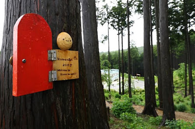 floresta Kicoro