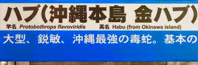 Protobothrops flavoviridis, habu, snake, sign, Japanese