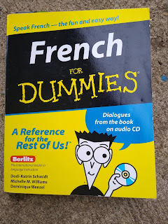 French for dummies the book