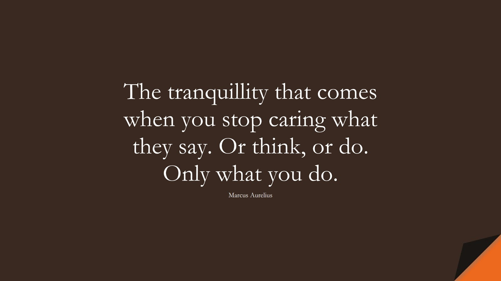 The tranquillity that comes when you stop caring what they say. Or think, or do. Only what you do. (Marcus Aurelius);  #MarcusAureliusQuotes