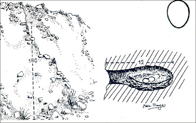 Coludito cola negra Leptasthenura aegithaloides