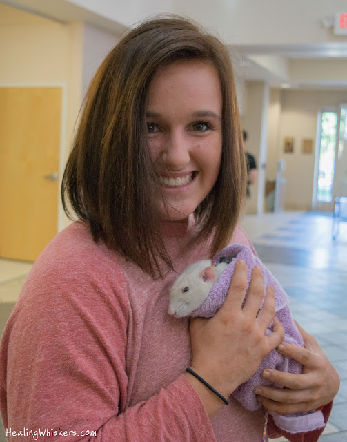 Oliver the Therapy Rat at Shorter University
