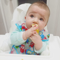 BLW Baby Led Weaning Alimentacion complementaria autorregulada