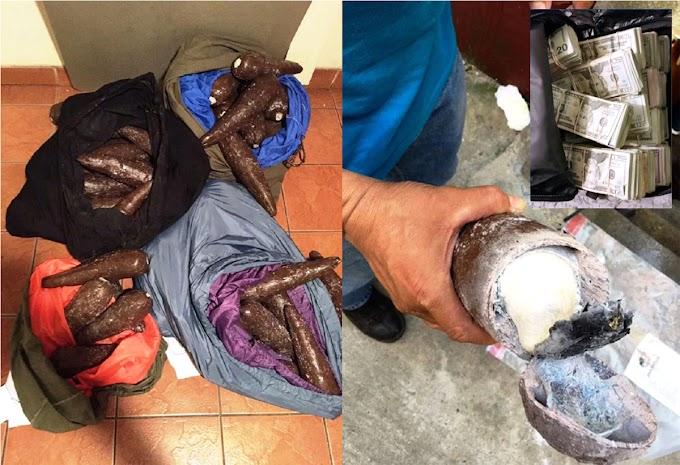 Un dominicano tenía 52 kilos de cocaína en yucas plásticas; le confiscan $225.000 en efectivo
