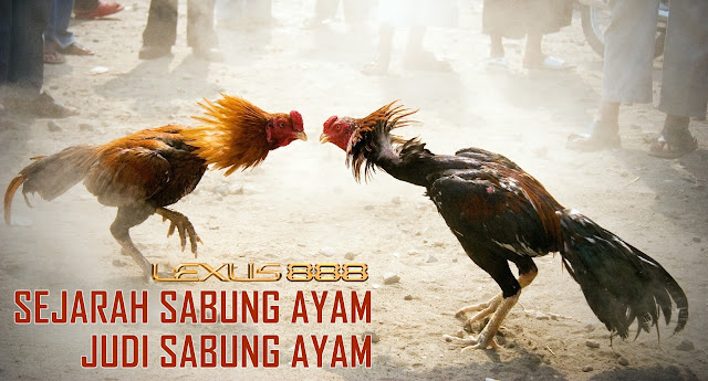 Sejarah sabung ayam laga