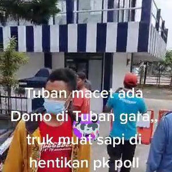 Ini Penjelasan Soal Viral Sopir Truk Sapi Ngeluruk Pos Polisi di Tuban