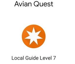 AvianQuest Level 7 Google Local Guide Google Maps