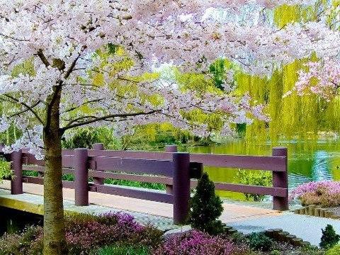 santai di taman yang indah