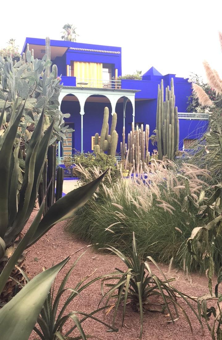 Majorelle Garden – Marrakech, Morocco