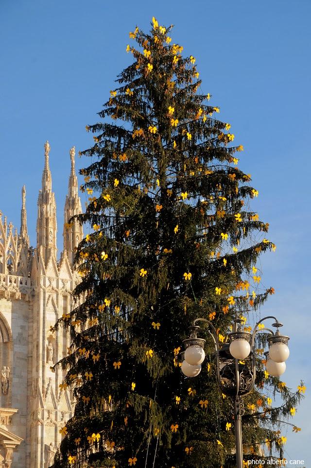 Milano, albero di Natale in piazza Duomo