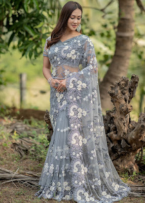 Grey Embroidered Net Heavy Border Saree indian party wear
