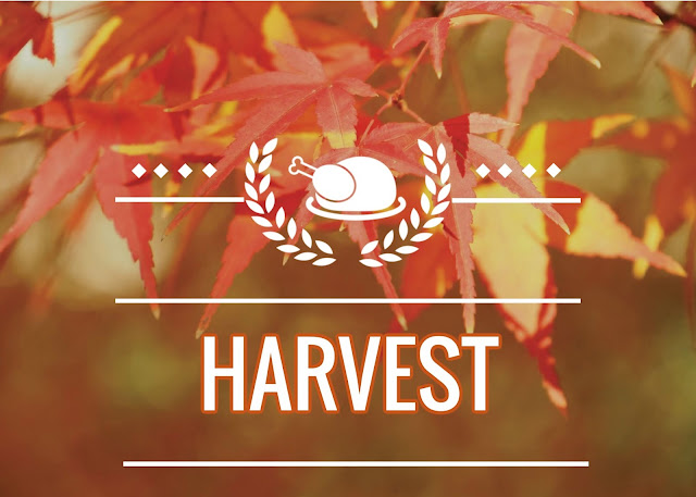 a simple post sharing more harvest decor i have also shared some of my older posts pertaining to fall i am still not feeling up to par - Harvest Decor
