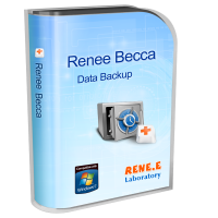 Renee Becca 2020.47.70.339 poster box cover