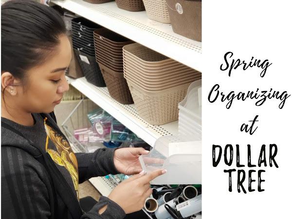 Spring Organization at Dollar Tree
