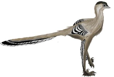 mei dinosaur