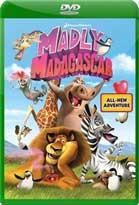 Madly Madagascar (2013) DVDRip Latino