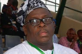 Kashamu boasts - 'Nobody can suspend me from PDP'