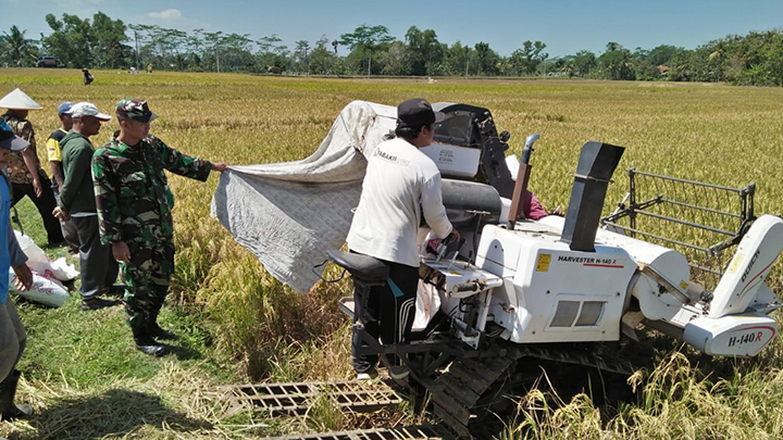Babinsa Dampingi Petani Memanen Padi Dengan Mesin Modern