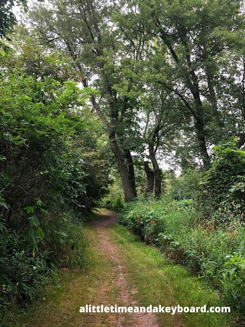 A rustic trail at Blackhawk Springs Forest Preserve in Rockford, Illinois welcomed us to the forest.