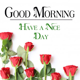 Good Morning Royal Images Download for Whatsapp Facebook8