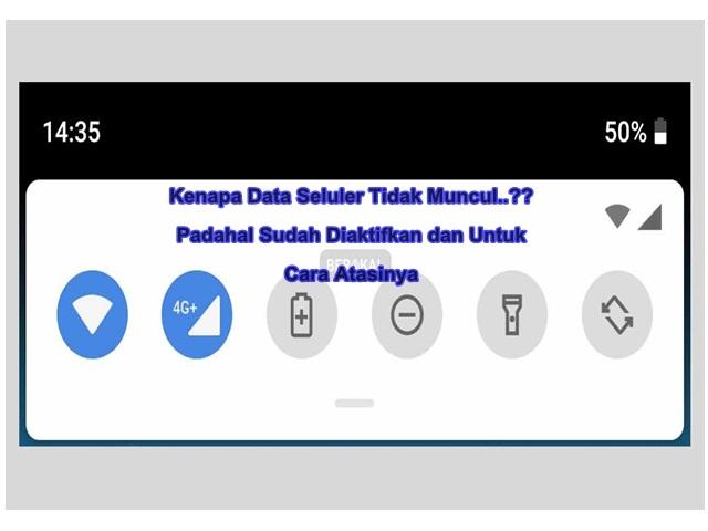 Kenapa Data Seluler Tidak Muncul..?? Padahal Sudah Diaktifkan Begini Untuk Cara Atasinya