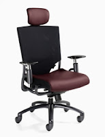 2629-1 Global Ride Chair