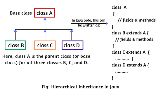Types of Inheritance in Java | Single,Multilevel,Multiple,Hybrid