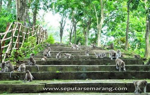 Goa Kreo  - wisata semarang - 30 Tempat Wisata di Semarang yang Harus Anda Kunjungi part 2