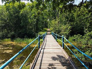 Графское. Великоанадольский лес. Мост через Кашлагач